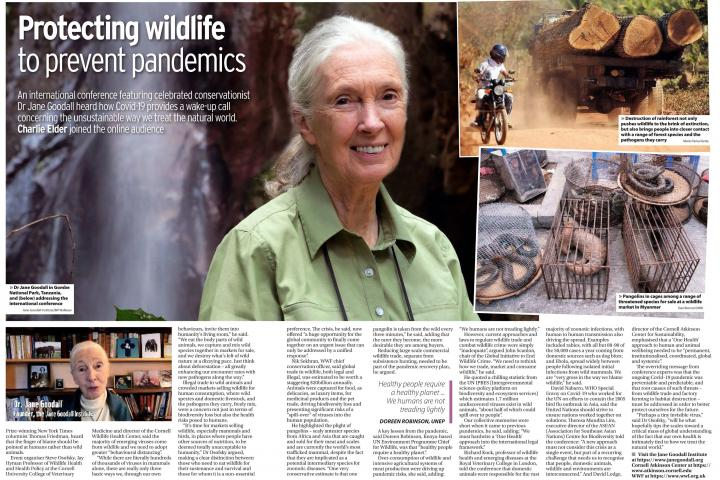 Pandemic Conference Feature poster that includes a portrait of Jane Goodall