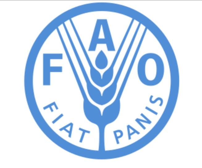 FAO (Southern Africa)